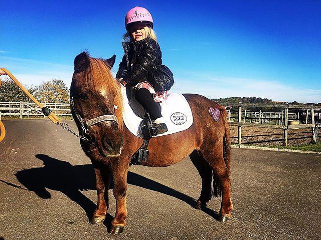 Prinsessan 👑 och Vindruva 🍇 #venadress