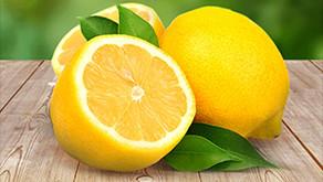 Ortaca Limonu İçin Coğrafi İşaret Başvurusu!