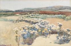 LUCY KEMP - WELCH (1869 - 1958)