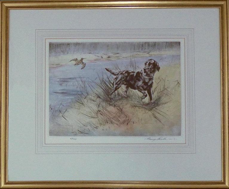 Henry Wilkinson drypoint etching black labrador.jpg