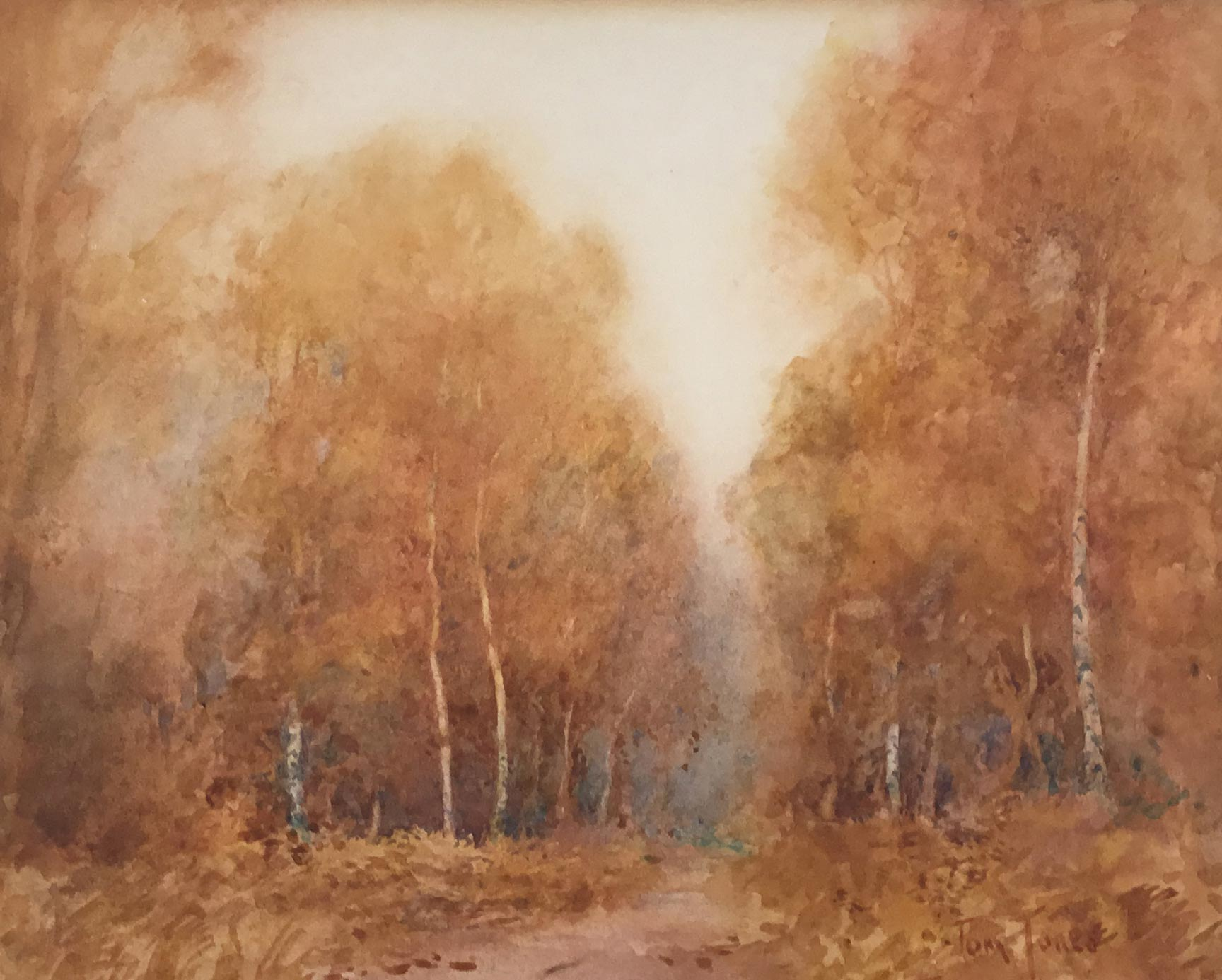 TOM JONES - SHERWOOD FOREST WATERCOLOUR