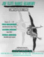Company Auditions Flyer 2021 copy.jpg