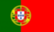 flag_of_portugal-svg_-e1500563180485.png