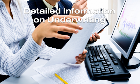 Underwriting Information 3.png