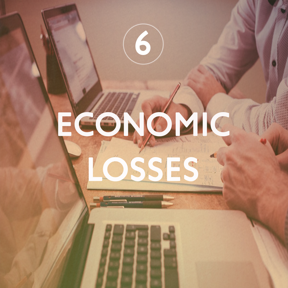 Economic Losses 6.png