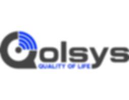 Qolsys Logo FULL COLOR large.jpg