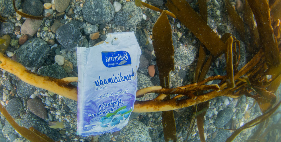 Beach clean-up project and study of plastics in Quintay 2019 Presence of plastic packaging on the seabed of Quintay.