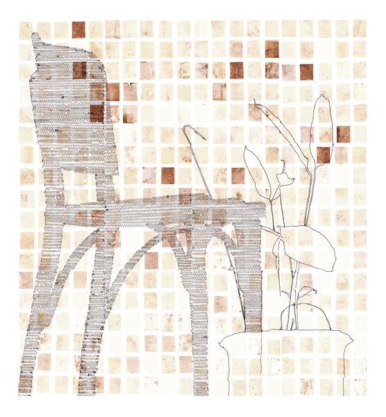Sombra IV (Cadeira e Maranta-cinza)