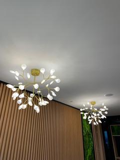 lighting 45.jpeg