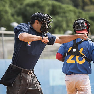 umpire.jpeg
