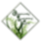 CSF-logo_color-asd2-01.png