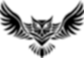 soaring-owl-logo-sticker-1539377442.2913