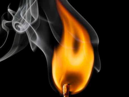 Don't Let Your Hard Work Go Up in Smoke - Protecting Your Canna-Legacy