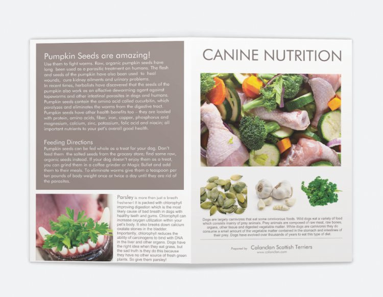 Canine Nutrition Pamphlet