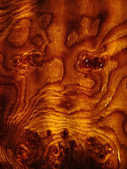 close up of oak veneer