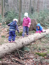 Kinder-im-Wald.jpg