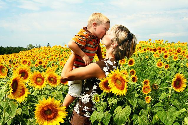 colby sunflower field 18.jpg