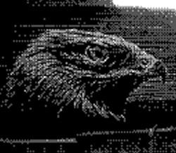 game boy camera - eagle head