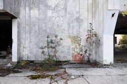 Exclusion Zone 77 - Graffiti
