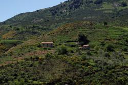 Sicily (23)