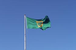 52 Guiness Flag