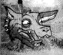 game boy camera - coyote graffiti