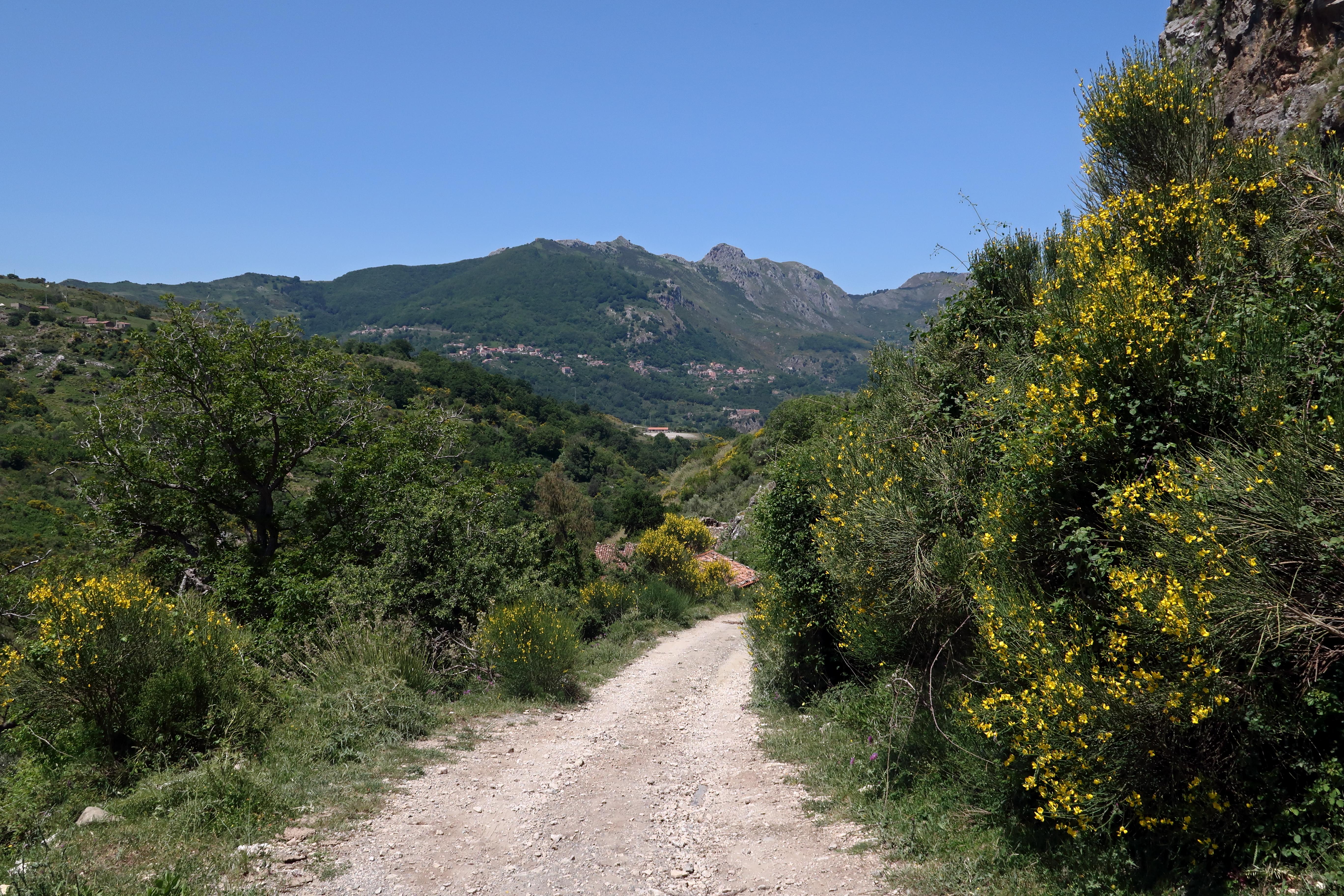 Sicily (26)