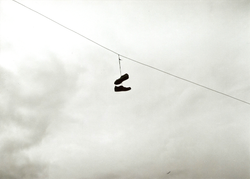 35mm Shoes Telephone Wire Nuneaton