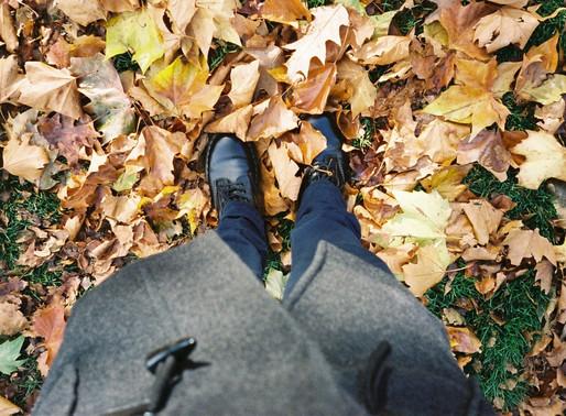 Autumn Photo Series - an 'APS' on APS
