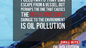 ¿Did you know the different types of Oil Spills?