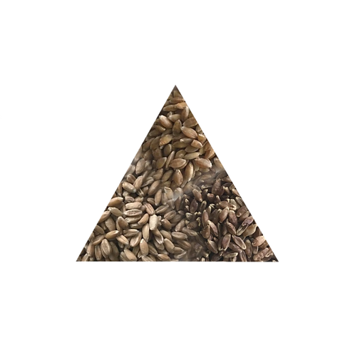 Dutch Fika blend - trio of ancient grains