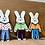 Thumbnail: Bunny Tag 10