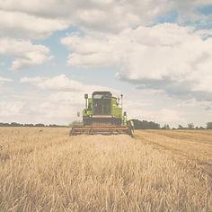 Agriculture 1080x1080.jpg