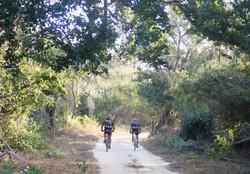 carrera-ciclismo-mtb-endurance-reto-baja-120k