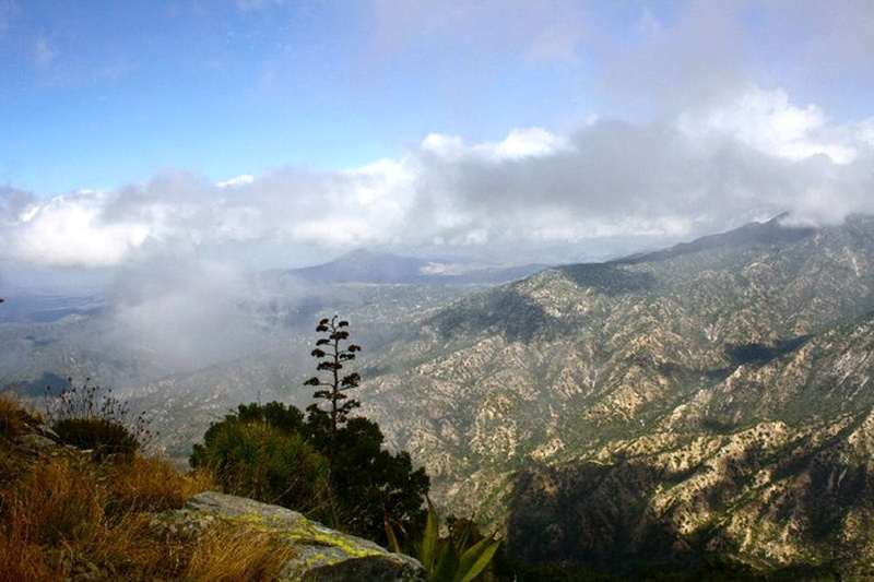 sierra-la-laguna-baja-california-sur