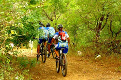 single-mtb-carrera-ciclismo-baja-sur