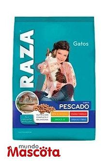 Raza gato adulto cat Mundo Mascota Moreno