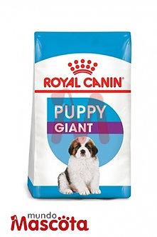 Royal Canin giant puppy cachorro Mundo Mascota Moreno