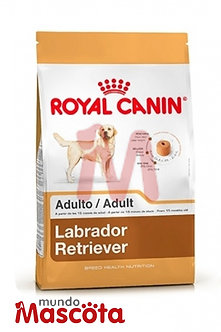 Royal Canin labrador retriever adulto Mundo Mascota Moreno