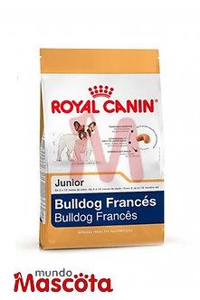 Royal Canin bulldog frances cachorro junior puppy Mundo Mascota Moreno