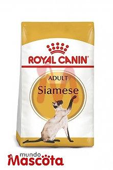Royal Canin siamese 38 cat gato adulto Mundo Mascota Moreno
