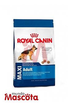 Royal Canin perro adulto maxi  Mundo Mascota Moreno