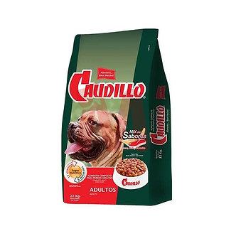 Caudillo Perro Adulto x22 kg