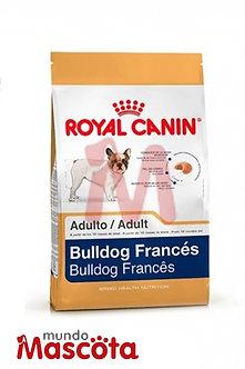 Royal Canin bulldog frances adulto Mundo Mascota Moreno