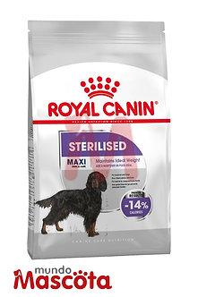 royal canin maxi sterilised perro castrado mundo mascota moreno