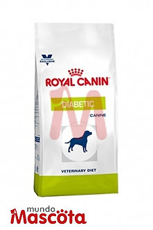Royal Canin diabetic dog perro adulto Mundo Mascota Moreno