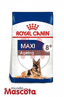 Royal Canin maxi ageimg 8+ senior  Mundo Mascota Moreno