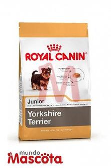 Royal Canin yorkshire terrier puppy junior cachorro Mundo Mascota Moreno
