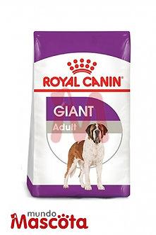 Royal Canin giant adulto Mundo Mascota Moreno