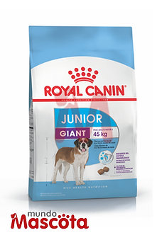 Royal Canin giant junior Mundo Mascota Moreno